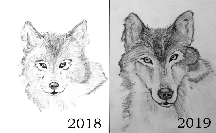 Wolves_compared